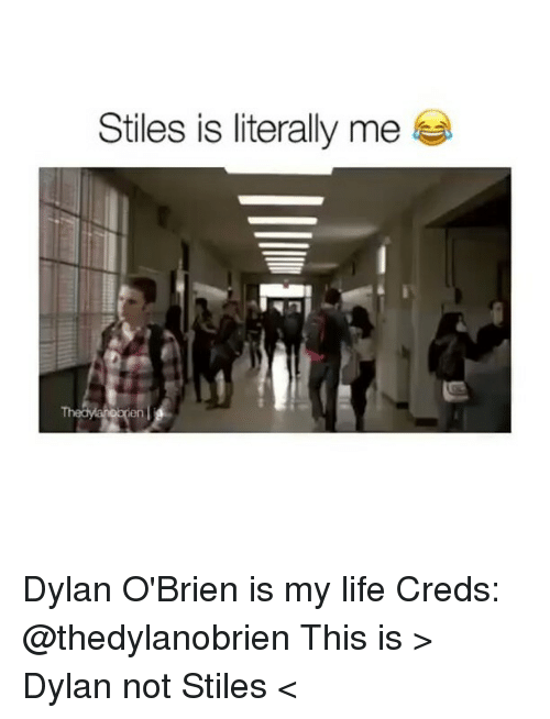 Dylan O'Brien, Life, and Memes: Stiles is literally me Dylan O'Brien is my life Creds: @thedylanobrien This is > Dylan not Stiles <
