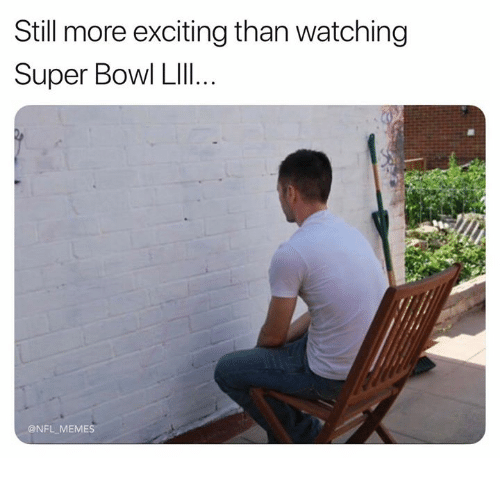 Memes, Nfl, and Super Bowl: Still more exciting than watching  Super Bowl LIlI..  @NFL MEMES