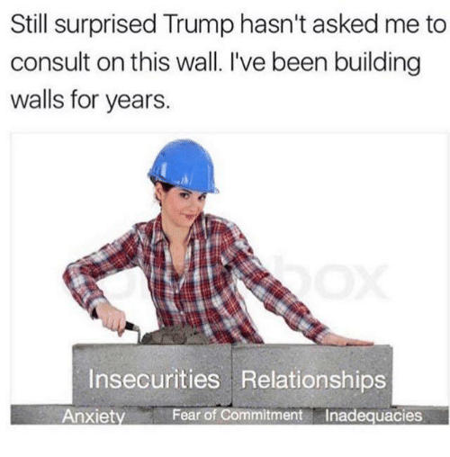 Memes, Relationships, and Anxiety: Still surprised Trump hasn't asked me to  consult on this wall. I've been building  walls for years.  Insecurities Relationships  Anxiety  Fear of Commitment  Inadequacies