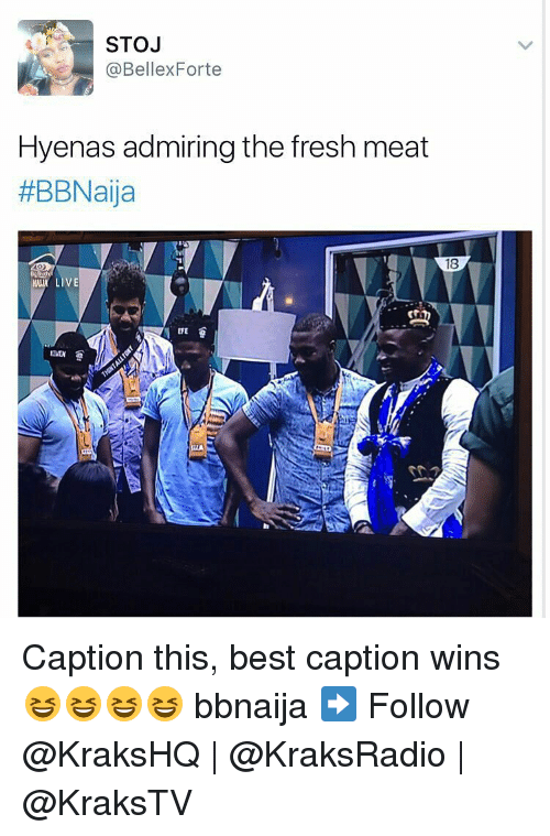 Memes, 🤖, and Hyena: STOJ  E @Bellex Forte  Hyenas admiring the fresh meat  #BBNaija  18  LIVE Caption this, best caption wins 😆😆😆😆 bbnaija ➡️ Follow @KraksHQ | @KraksRadio | @KraksTV