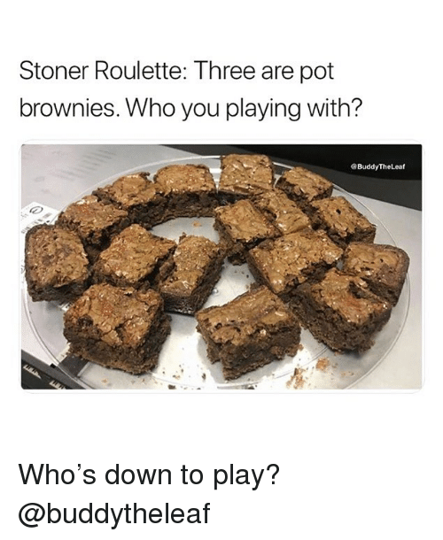 Weed, Marijuana, and Who: Stoner Roulette: Three are pot  brownies. Who you playing with?  ®BuddyTheLeaf  左  , Who's down to play? @buddytheleaf