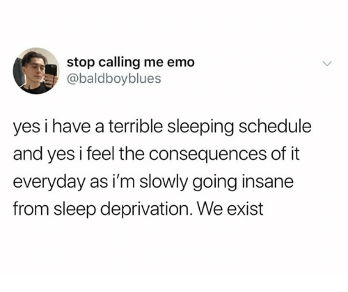 Dank, Emo, and Schedule: stop calling me emo  @baldboyblues  yes i have a terrible sleeping schedule  and yes i feel the consequences of it  everyday as i'm slowly going insane  from sleep deprivation. We exist