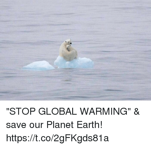 """Global Warming, Memes, and Earth: """"STOP GLOBAL WARMING"""" & save our Planet Earth! https://t.co/2gFKgds81a"""