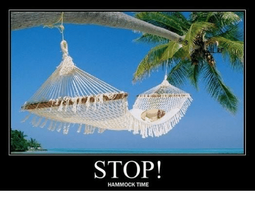 Medium image of dank hammock and time  stop  hammock time
