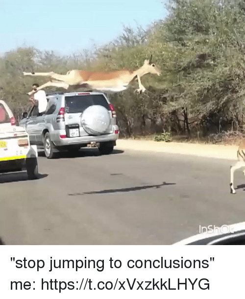 "Funny, Stop, and Jumping: ""stop jumping to conclusions"" me: https://t.co/xVxzkkLHYG"