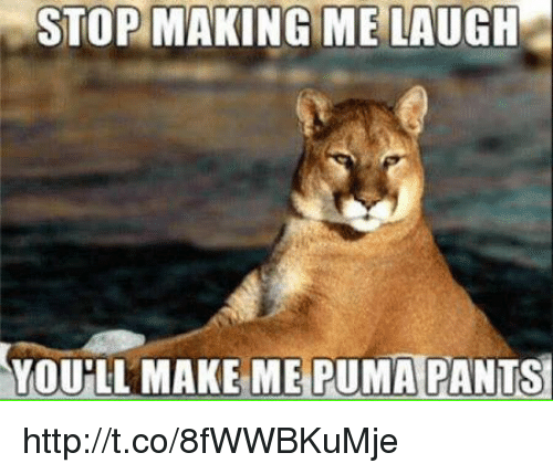 Memes, Puma, and 🤖: STOP MAKING ME LAUGH  YOULL MAKE ME PUMA PANTS http://t.co/8fWWBKuMje