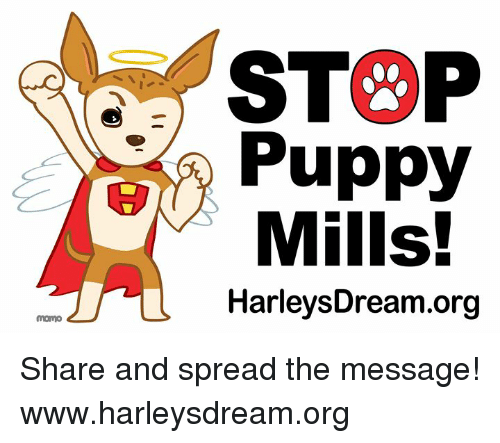 STOP Puppy Mills! HarleysDreamorg Mono Share and Spread the