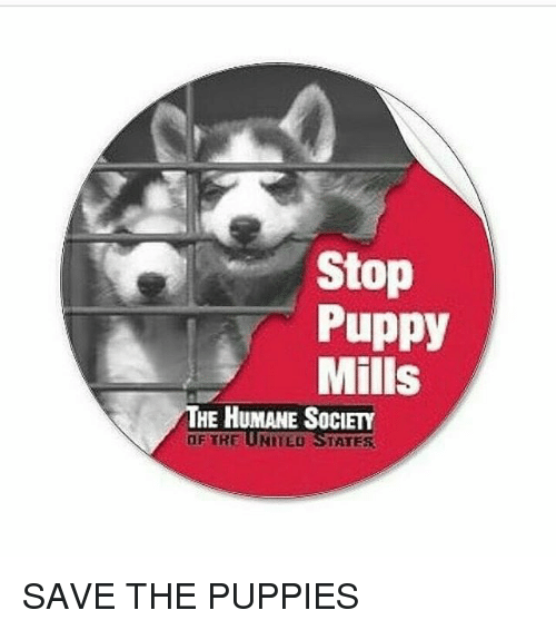 Stop Puppy Mills HE HUMANE SOCIETY OF THE UNITED STATES SAVE