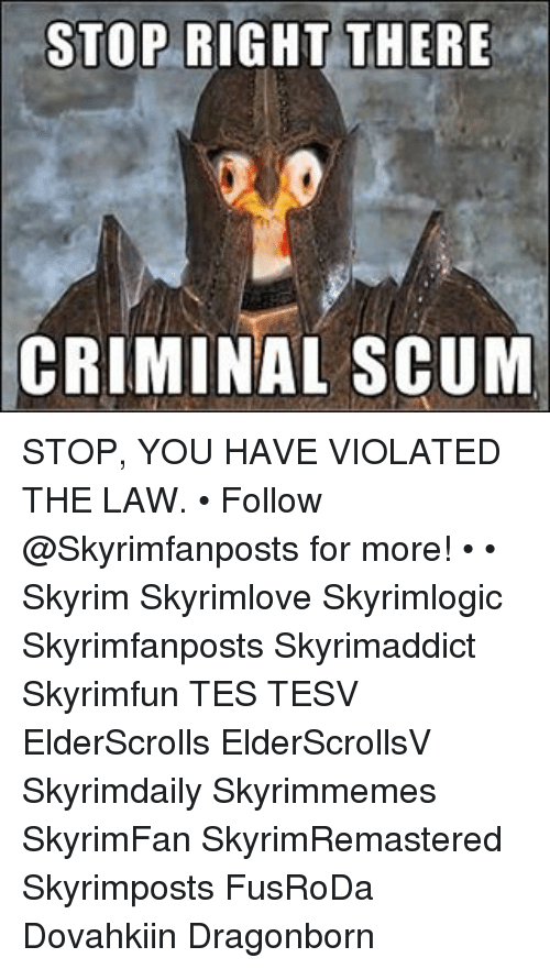 Stop Right There Criminal Scum Stop You Have Violated The Law