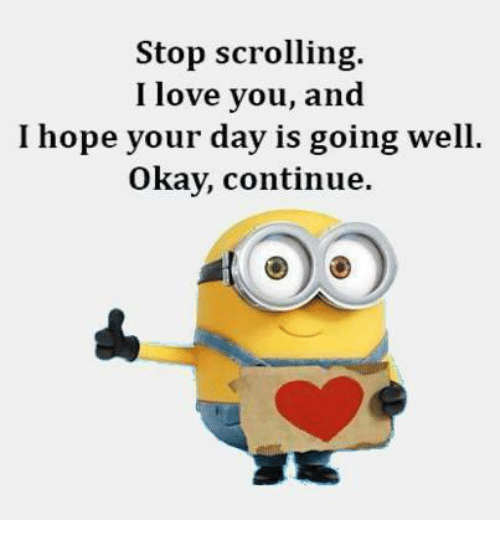 Stop Scrolling I Love You And I Hope Your Day Is Going Well Okay