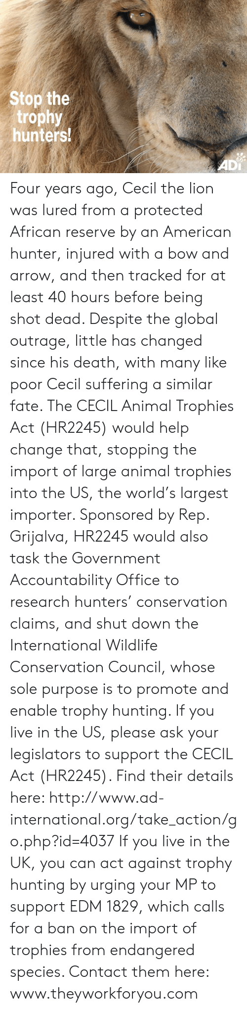 Memes, Hunting, and American: Stop the  trophy  hunters!  ADi Four years ago, Cecil the lion was lured from a protected African reserve by an American hunter, injured with a bow and arrow, and then tracked for at least 40 hours before being shot dead. Despite the global outrage, little has changed since his death, with many like poor Cecil suffering a similar fate. The CECIL Animal Trophies Act (HR2245) would help change that, stopping the import of large animal trophies into the US, the world's largest importer. Sponsored by Rep. Grijalva, HR2245 would also task the Government Accountability Office to research hunters' conservation claims, and shut down the International Wildlife Conservation Council, whose sole purpose is to promote and enable trophy hunting.   If you live in the US, please ask your legislators to support the CECIL Act (HR2245). Find their details here:  http://www.ad-international.org/take_action/go.php?id=4037   If you live in the UK, you can act against trophy hunting by urging your MP to support EDM 1829, which calls for a ban on the import of trophies from endangered species. Contact them here: www.theyworkforyou.com