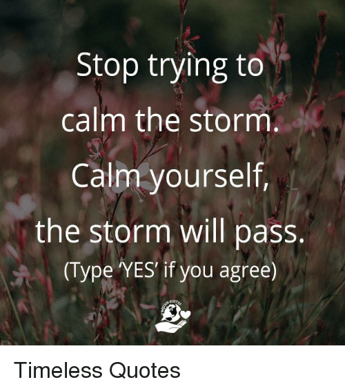 Stop Trying To Calm The Storm Calm Yourself The Storm Will Pass Type