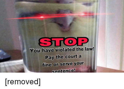 Stop You Have Violated The Law Pay The Court A Fine Or Serve Your
