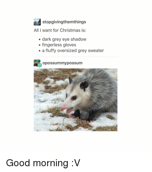 Christmas, Tumblr, and Good Morning: stopgivingthemthings  All I want for Christmas is:  dark grey eye shadow  fingerless gloves  a fluffy oversized grey sweater  opossummy possum Good morning :V