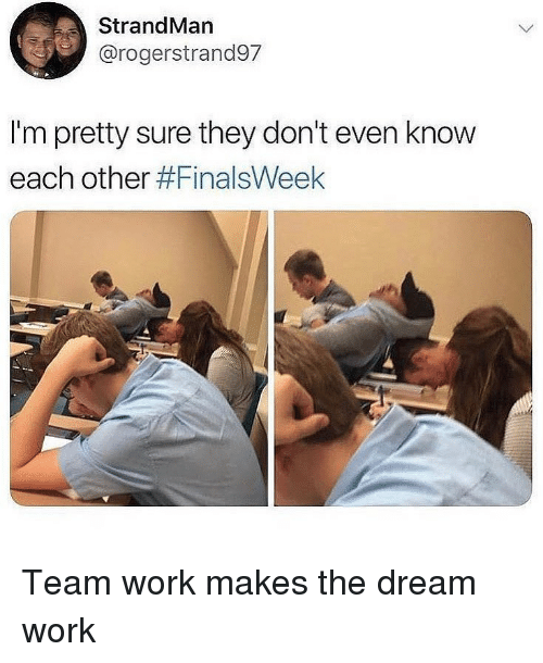 Memes, Work, and 🤖: StrandMan  @rogerstrand97  I'm pretty sure they don't even know  each other Team work makes the dream work