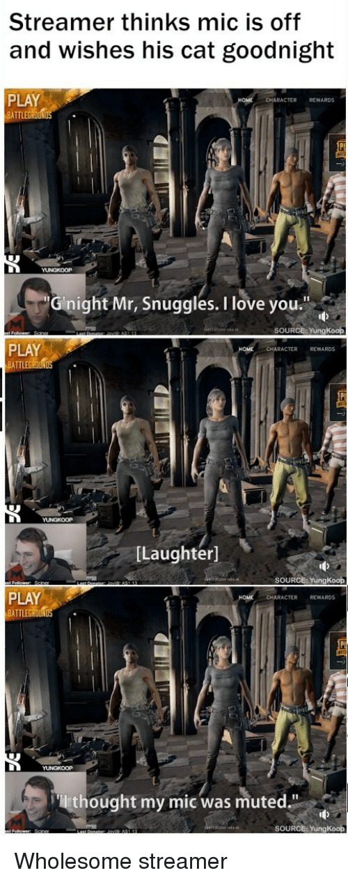 "Love, I Love You, and Wholesome: Streamer thinks mic is off  and wishes his cat goodnight  PLAY  BATTLEGROUN  CHARACTER REWARDS  Gnight Mr, Snuggles. I love you.""  SOURCE: YungKoop  PLAY  BATTLEG  CHARACTER REWARDS  [Laughter]  SOURCE: YungKoop  PLAY  BATTLEGROUND  CHARACTER REWARDS  thought my mic was muted.""  SOURCE: YungKoop <p>Wholesome streamer</p>"