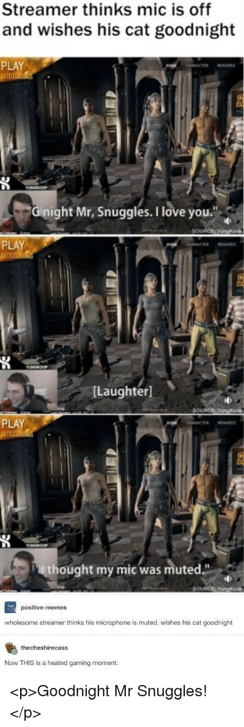 "Love, Memes, and I Love You: Streamer thinks mic is off  and wishes his cat goodnight  PLAY  İATT  Gnight Mr, Snuggles.I love you.""  PLAY  [Laughter]  PLAY  lthought my mic was muted""  SOURCE  positive-memes  wholesome streamer thinks his microphone is muted, wishes his cat goodnight  thecheshirecasS  Now THIS is a heated gaming moment. <p>Goodnight Mr Snuggles!</p>"