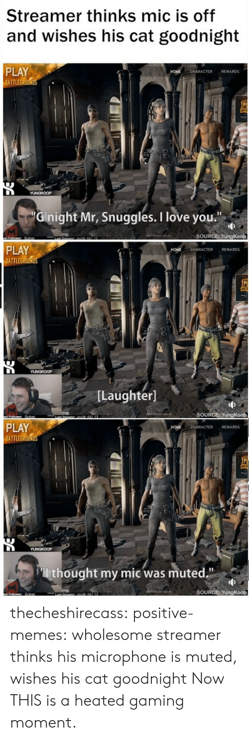 """Love, Memes, and Tumblr: Streamer thinks mic is off  and wishes his cat goodnight  PLAY  ATTLEGROUN  CHARACTER REWARDS  Ginight Mr, Snuggles. I love you  SOURCE: YungKoop  PLAY  BATTLEGROUND  CHARACTER REWARDS  [Laughter]  SOURCE: YungKoop  PLAY  BATTLEG  HOME  CHARACTER REWARDS  thought my mic was muted.""""  SOURCE: YungKoop thecheshirecass:  positive-memes: wholesome streamer thinks his microphone is muted, wishes his cat goodnight  Now THIS is a heated gaming moment."""