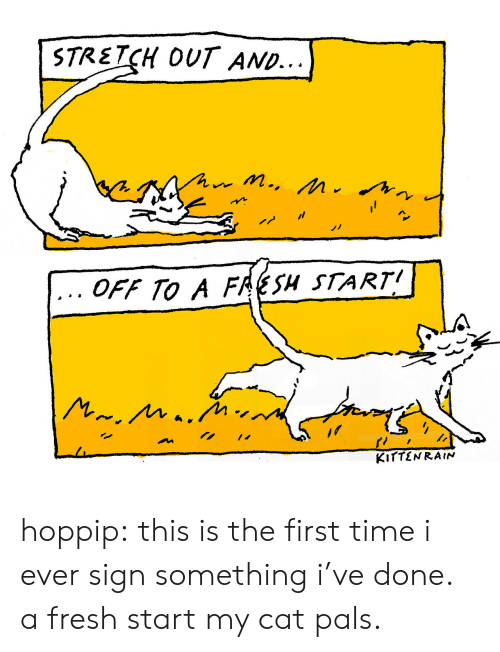 Fresh, Tumblr, and Blog: STRETCH OUT AND...  OFF TO A FRESH START hoppip: this is the first time i ever sign something i've done. a fresh start my cat pals.