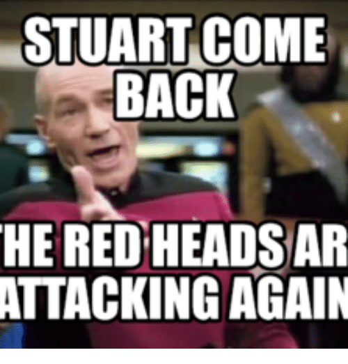 Stuart Come Back He Red Heads Ar Attacking Again Red Heads Meme On