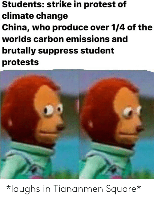 Protest, Reddit, and China: Students: strike in protest of  climate change  China, who produce over 1/4 of the  worlds carbon emissions and  brutally suppress student  protests *laughs in Tiananmen Square*