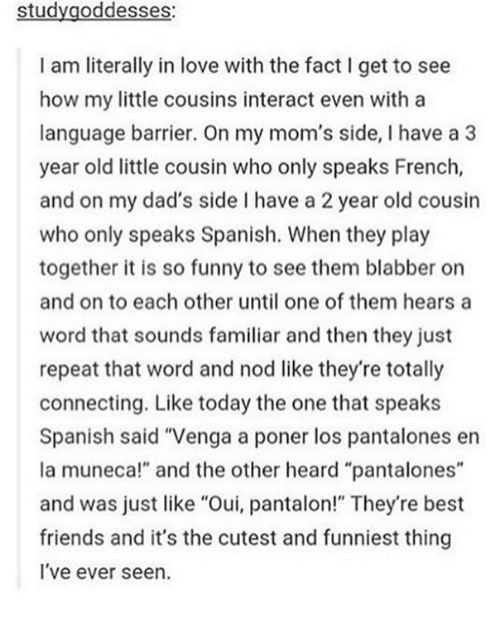 "Dank, 🤖, and The Others: study goddesses:  I am literally in love with the fact l get to see  how my little cousins interact even with a  language barrier. On my mom's side, l have a 3  year old little cousin who only speaks French,  and on my dad's side l have a 2 year old cousin  who only speaks Spanish. When they play  together it is so funny to see them blabber on  and on to each other until one of them hears a  word that sounds familiar and then they just  repeat that word and nod like they're totally  connecting. Like today the one that speaks  Spanish said ""Venga a poner los pantalones en  la muneca!"" and the other heard ""pantalones""  and was just like ""Oui, pantalon!"" They're best  friends and it's the cutest and funniest thing  I've ever seen."