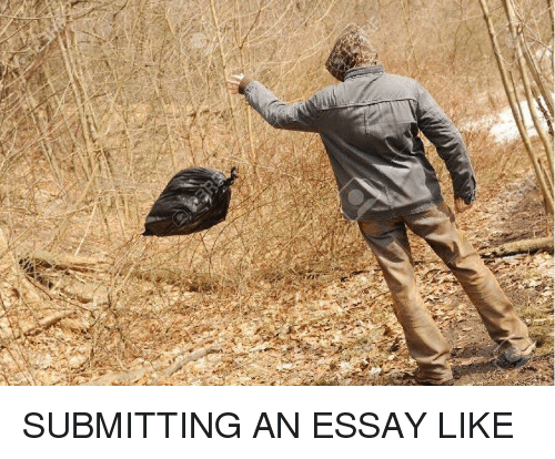 Writing essays