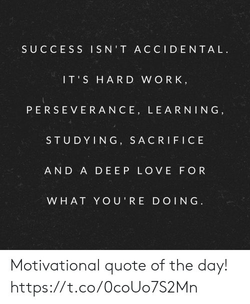 Success Isnt Accidental Its Hard W Or K Perseverance Learning
