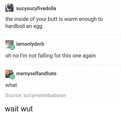 Butt, Memes, and 🤖: sucysucyfivedolla  the inside of your butt is warm enough to  hardboil an egg  iamonlydorb  oh no l'm not falling for this one again  memyselfandhate  what  Source: sucymemebabaran wait wut