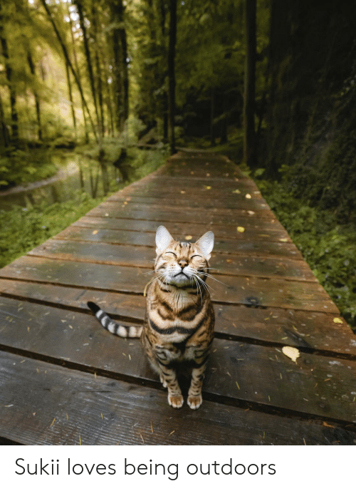 Loves, Outdoors, and Being: Sukii loves being outdoors