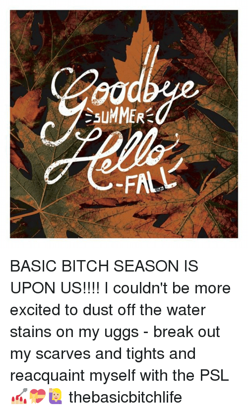 Memes, 🤖, And Basic: SuMMER BASIC BITCH SEASON IS UPON US!