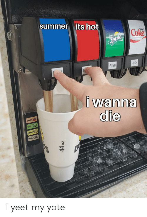 Reddit, Summer, and Diet: summer its hot  Coke  Diet  PUSH  PUSH  P  i wanna  die  CHEIKY  LIME  ANOVEN  WANTLLA  44 oz I yeet my yote