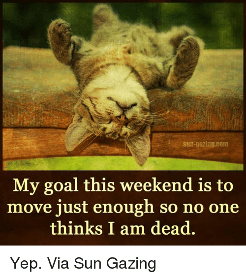Memes, Goal, and 🤖: Sun-gazing, com  My goal this weekend is to  move just enough so no one  thinks I am dead. Yep. Via Sun Gazing