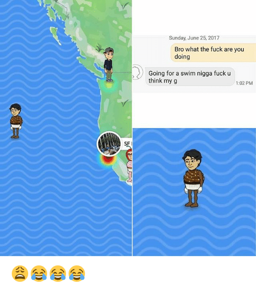 Funny, Memes, and Sunday: Sunday, June 25, 2017  Bro what the fuck are you  doing  Going for a swim nigga fuck u  think my g  1:02 PM  SF 😩😂😂😂