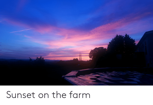 Sunset, The Farm, and Farm: Sunset on the farm