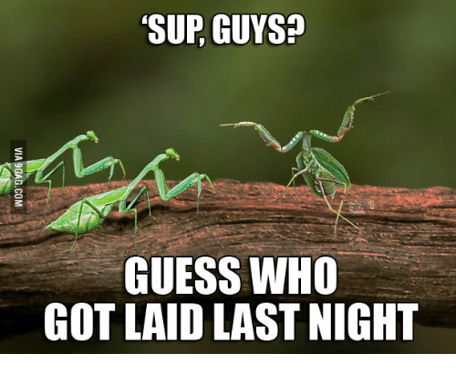sup-guys-guess-who-got-laid-last-night-1