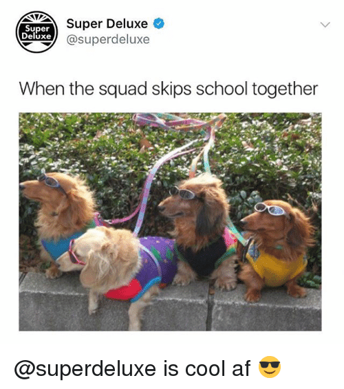 Af, Memes, and School: Super Deluxe  xe @superdeluxe  Super  Deluxe  When the squad skips school together @superdeluxe is cool af 😎