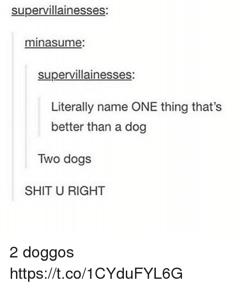Dogs, Shit, and Dog: supervillainesses:  minasume:  supervillainesses  Literally name ONE thing that's  better than a dog  Two dogs  SHIT U RIGHT 2 doggos https://t.co/1CYduFYL6G