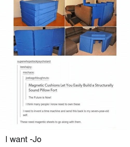 Future, Memes, and Time: superwhopotlockpsy  chotard  eeshajoy:  mschaos:  joebagofdoughnuts:  Magnetic Cushions Let You Easily Build a Structurally  Sound Pillow Fort  The Future is Now!  I think many people I know need to own these  I need to invent a time machine and send this back to my seven-year-old  self.  These need magentic sheets to go along with them. I want -Jo