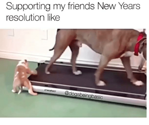 Memes, New Year's Resolutions, and 🤖: Supporting my friends New Years  resolution like  @do  sbeingbasic