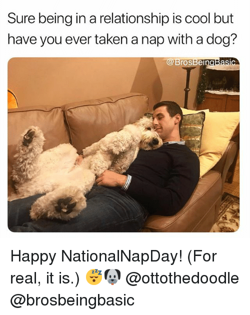 Taken, Cool, and Happy: Sure being in a relationship is cool but  have you ever taken a nap with a dog?  @BrosBer Happy NationalNapDay! (For real, it is.) 😴🐶 @ottothedoodle @brosbeingbasic