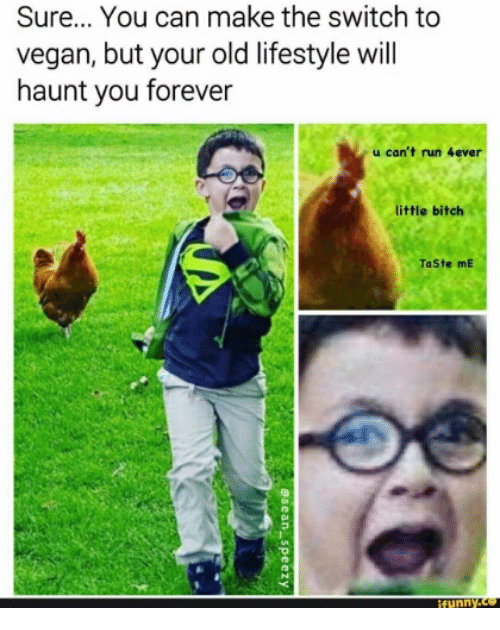 Bitch, Run, and Vegan: Sure... You can make the switch to  vegan, but your old lifestyle will  haunt you forever  u can't run  little bitch  TaSte mE