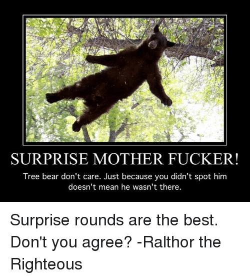 surprise mother fucker tree bear dont care just because you 5312512 25 best surprise mother fucker memes surprise mother memes