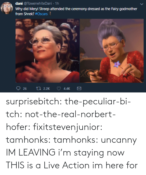 Tumblr, Blog, and Http: surprisebitch: the-peculiar-bi-tch:  not-the-real-norbert-hofer:  fixitstevenjunior:  tamhonks:  tamhonks: uncanny   IM LEAVING    i'm staying   now THIS is a Live Action im here for