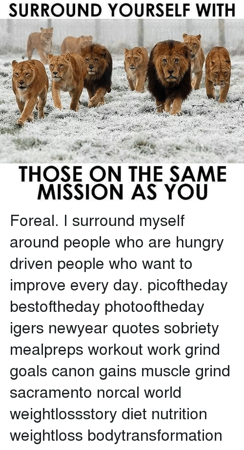 memes canon and sacramento surround yourself with those on the same mission as