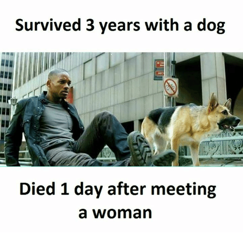 SIZZLE: Survived 3 years with a dog  Died 1 day after meeting  a woman
