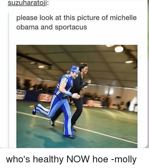 Hoe, Memes, and Michelle Obama: Suzuharatoji:  please look at this picture of michelle  Obama and sportacus who's healthy NOW hoe -molly