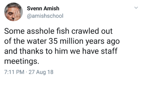 7/11, Fish, and Water: Svenn Amish  @amishschool  Some asshole fish crawled out  of the water 35 million years ago  and thanks to him we have staff  meetings.  7:11 PM 27 Aug 18