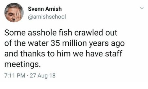 7/11, Dank, and Fish: Svenn Amish  @amishschool  Some asshole fish crawled out  of the water 35 million years ago  and thanks to him we have staff  meetings.  7:11 PM 27 Aug 18