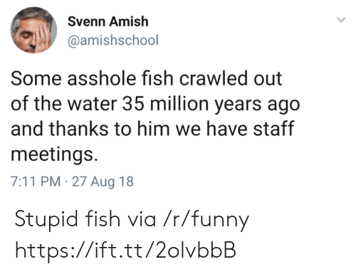 7/11, Funny, and Fish: Svenn Amish  @amishschool  Some asshole fish crawled out  of the water 35 million years ago  and thanks to him we have staff  meetings.  7:11 PM-27 Aug 18 Stupid fish via /r/funny https://ift.tt/2olvbbB